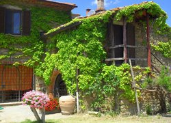 Montemaggiore Wine & Countryhouses