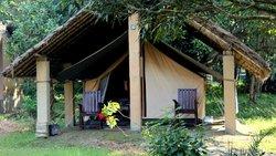 Koshi Camp Pvt. Ltd