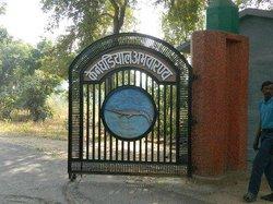 Ken Gharial Sanctuary