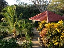il giardino e zona relax