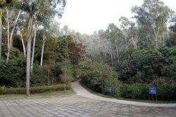 Bijiashan Park