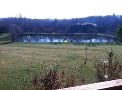View from Lacey's to the pond