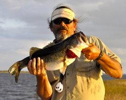 Veterans Bass