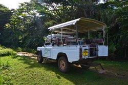 Tahaa Tour Excursion Day Tours