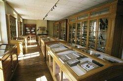 Musée d'Histoire Naturelle Philadelphe Thomas