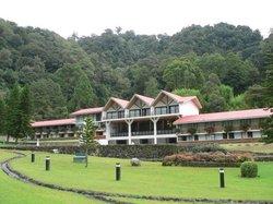 Hotel Bambito Resort