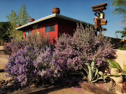 Spin and Margie's Desert Hideaway