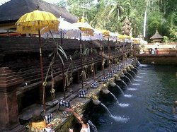 Mr. Bali Tour - Day Tours
