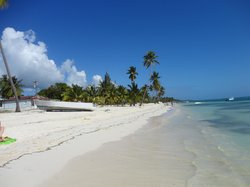 Concept Tours Punta Cana -  Private Day Tours