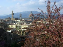 Florence Tours by Made of Tuscany