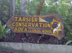 ‪Tarsier Conservation Area‬
