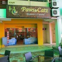 Paws & Catz Cafe
