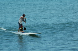 Costa Rica Stand Up Paddle Boarding