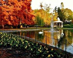 Danube Park