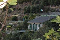 Villa Pietra Fiore nestled in the hillside