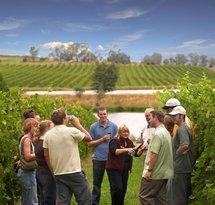 Australian Wine Tour Company
