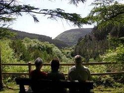 Afan Forest Park