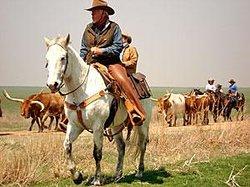 Moore Ranch