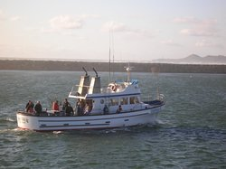 NMS Fishing Charters