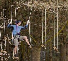 Adrenalin Forest