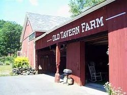 Old Tavern Farm