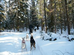 Highland Wilderness Tours