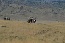 The Bucking S Ranch