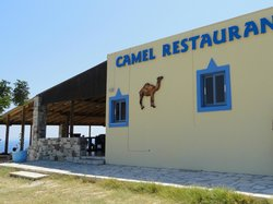 Camel Fish Restaurant & Camel Beach