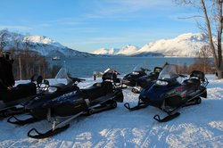 Tour in Lyngen Alps - Day Tours