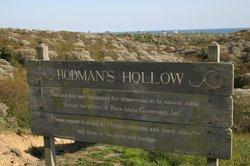 Rodman's Hollow