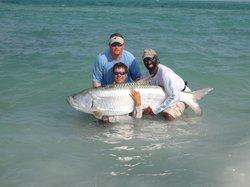 Tampa Bay Fishing with Captain Matt - Tours