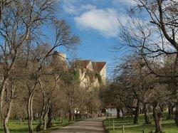 Chateau de Pleujouse