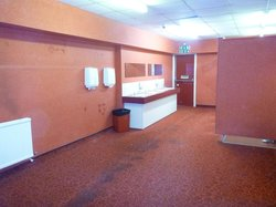 Lower Ground floor toilets with stained carpet /walls