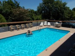 Our guests enjoying our pool