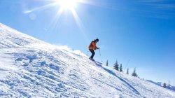 Skiing (60214040)