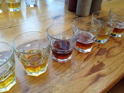 Bay Area Brewery Tours Day Tours