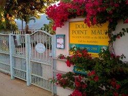 Dolphins Point Maui