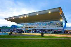 Greyhound Stadium - Curraheen Park