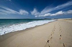 beach                                   (60543734)