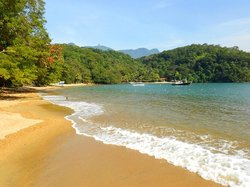 beach                  (60545915)