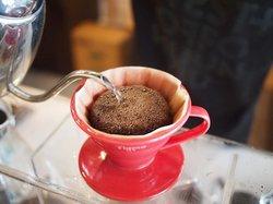 Geisha Speciality Coffee