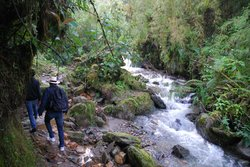 Reserva Ecologica Rio Blanco