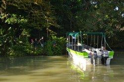 Gamboa Rainforest Resort Guided Fishing Tour