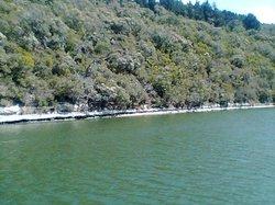 Nelson River Cruises