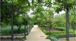 Jardin Botanico de Cordoba