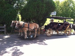 Lexington Carriage Company