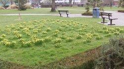 Crawley Memorial Gardens
