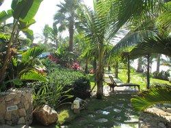 Beautiful gardens all around