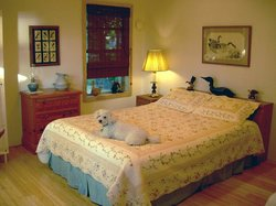 Lagoon Point Bed and Breakfast