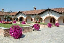 Azienda Agricola Negro Angelo & Figli
